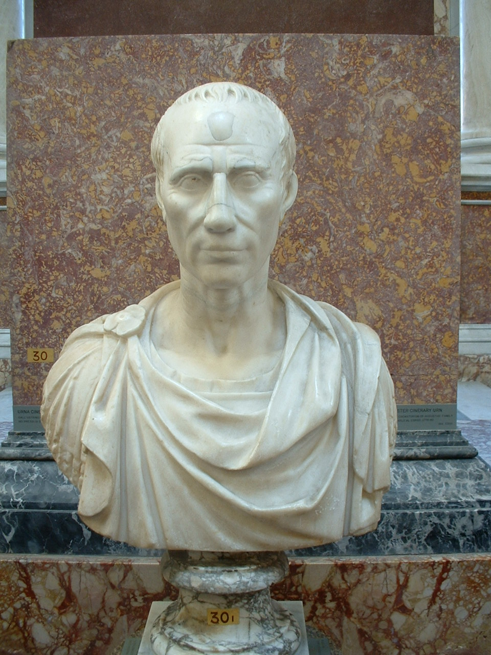 the life and reign of julius caesar Augustus (gaius julius caesar augustus, 23 september 63 bc - 19 august ad 14) was the first and one of the most important roman emperors he led rome in its transition from a republic to a great empire.