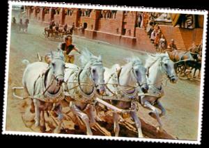 Ancient Roman Chariot Races